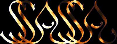 ssassa logo tranz2